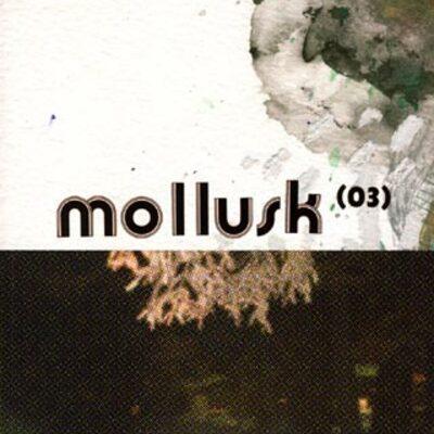 Mollusk n° 3