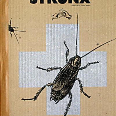 Stronx n° 4